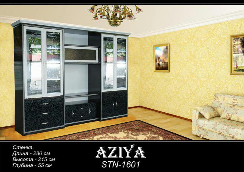 Aziya 1601
