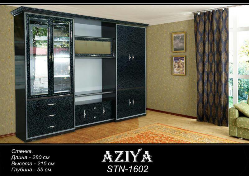 Aziya 1602