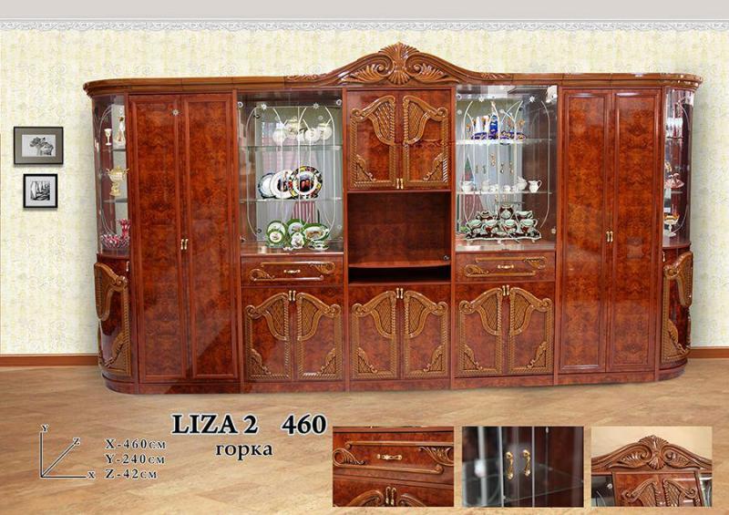 Liza 2 460